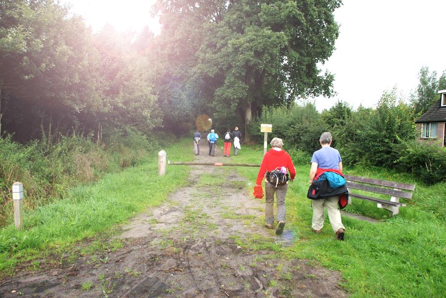 Wandelroute Nationaal Park Weerribben vanuit Restaurant 't Binnenhof in Paasloo Overijssel (bij Steenwijk)