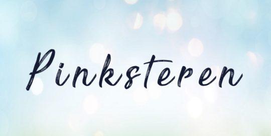 Uit eten met Pinksteren bij Restaurant 't Binnenhof Paasloo (Steenwijk) Overijssel